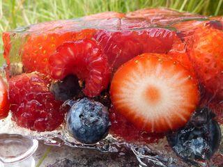 Fruit terrine (3)