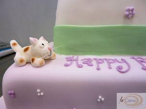 70th Birthday Cake Cat