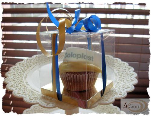 Coloplast individual gift box.
