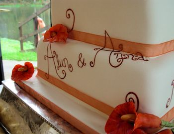 Alun & Anna's Wedding Cake